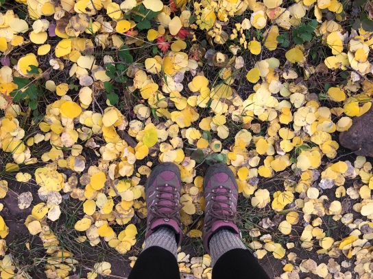 A close up of Nicole's hiking boots as she photographs all of the yellow aspen leaves that have fallen to the ground.